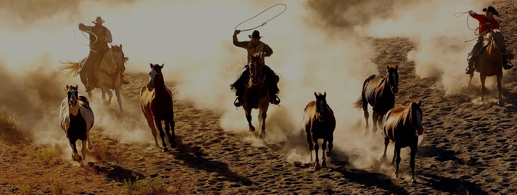 Moderne Cowboys